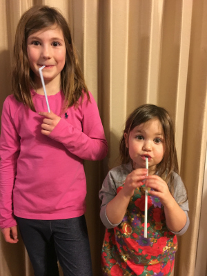 DIY: Drinking Straw Oboe